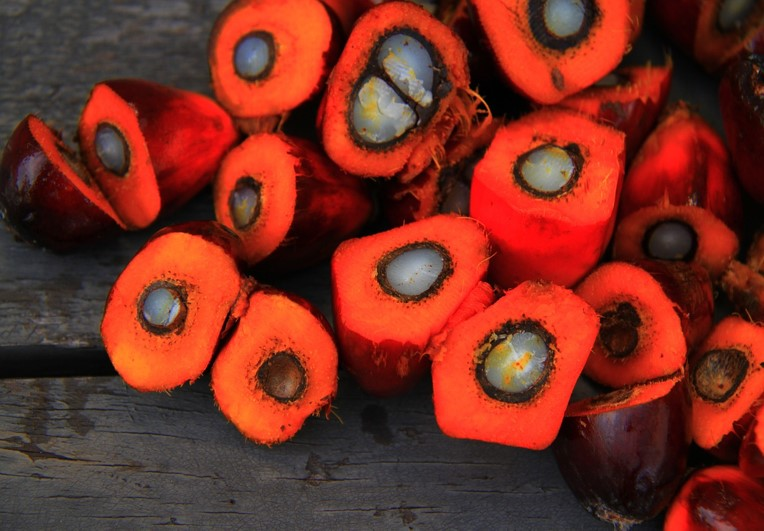 Why Is Palm Oil The Most Used Oil In The World?